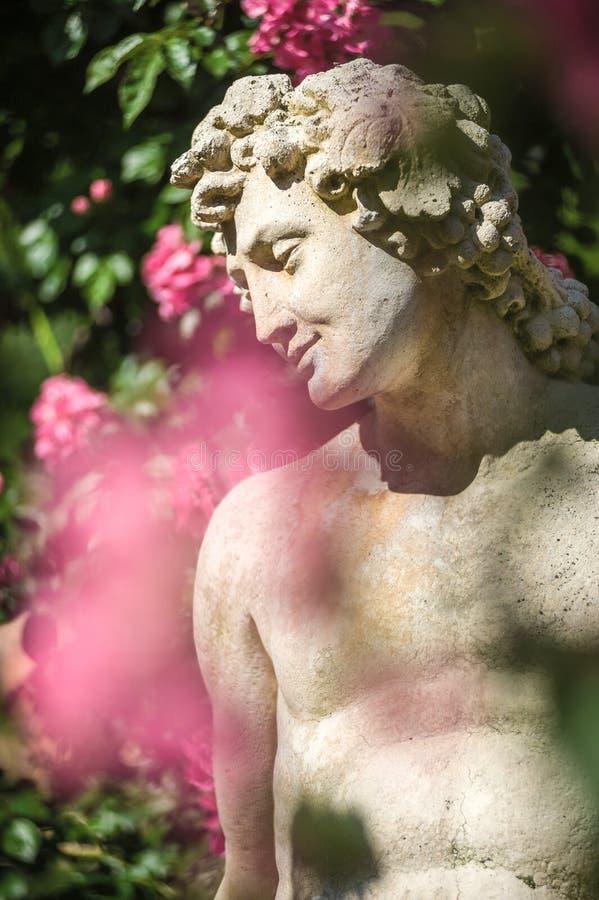 Roses et statue de dieux dans la roseraie Beutig dans Baden-Baden image libre de droits
