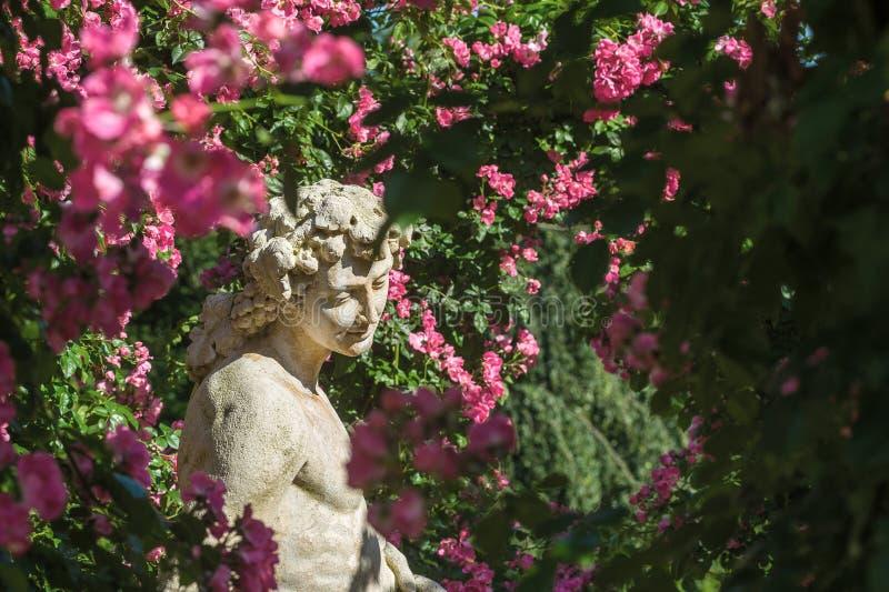 Roses et statue de dieux dans la roseraie Beutig dans Baden-Baden photographie stock libre de droits