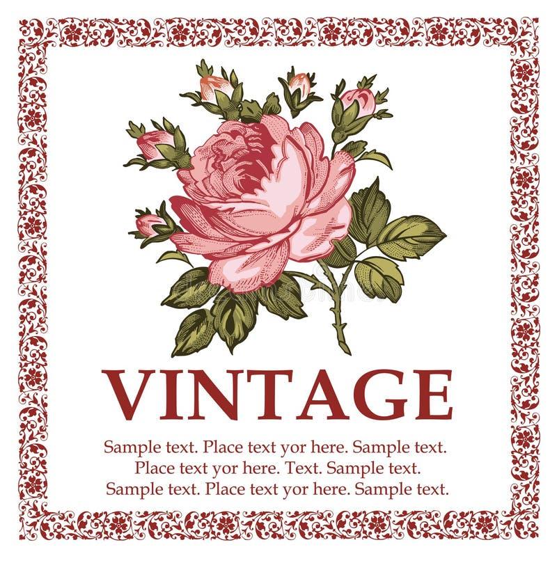 roses floral Illustration de vecteur illustration libre de droits