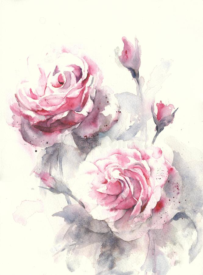 Roses flower bouquet watercolor painting illustration royalty free illustration