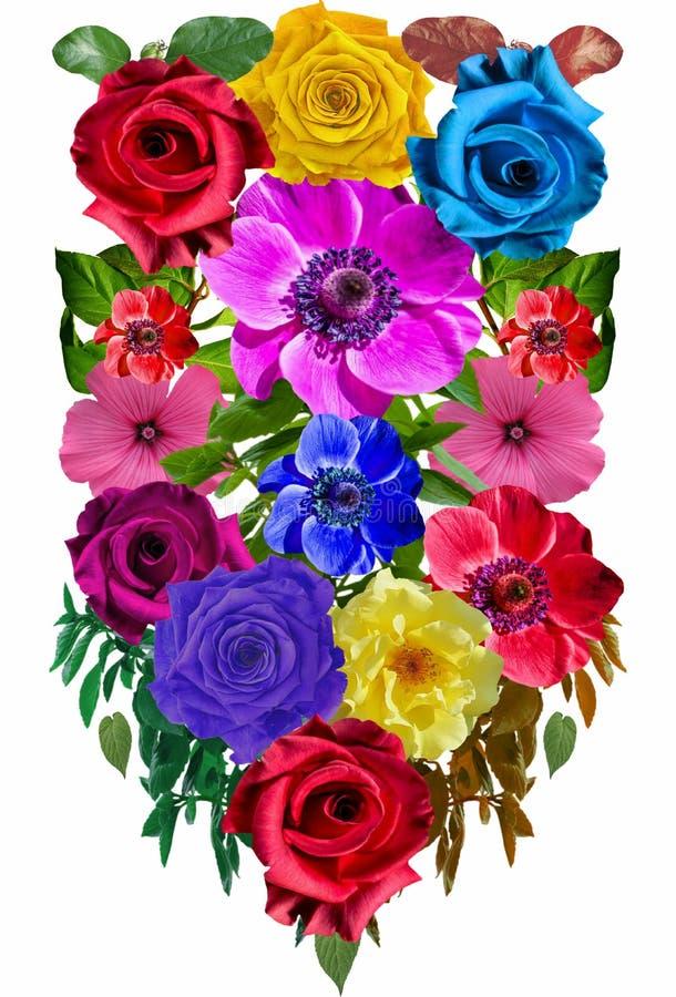 Roses Flower ornamen 26 stock photography