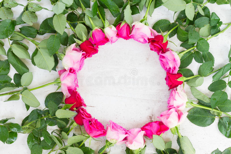 Download Roses fraîches roses photo stock. Image du normal, rond - 77159866