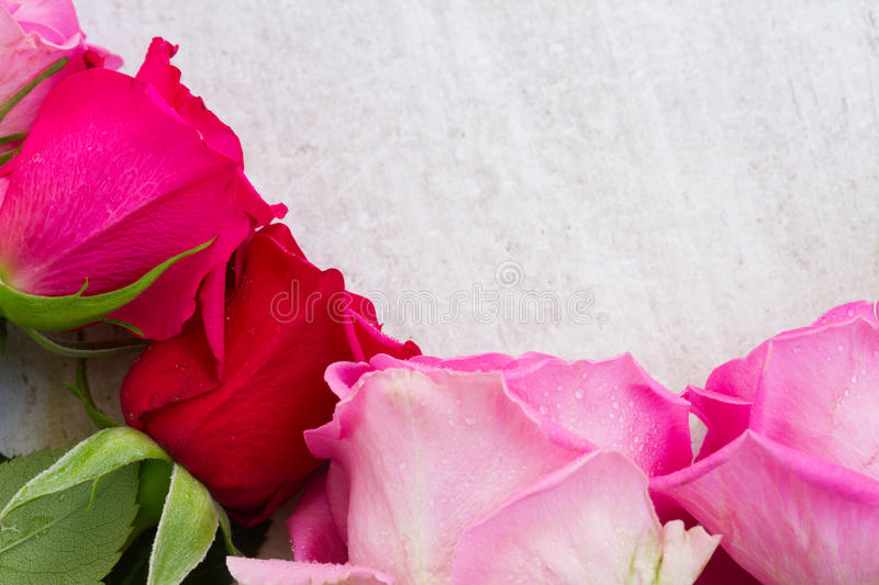 Download Roses fraîches roses photo stock. Image du bouquet, vacances - 77160794