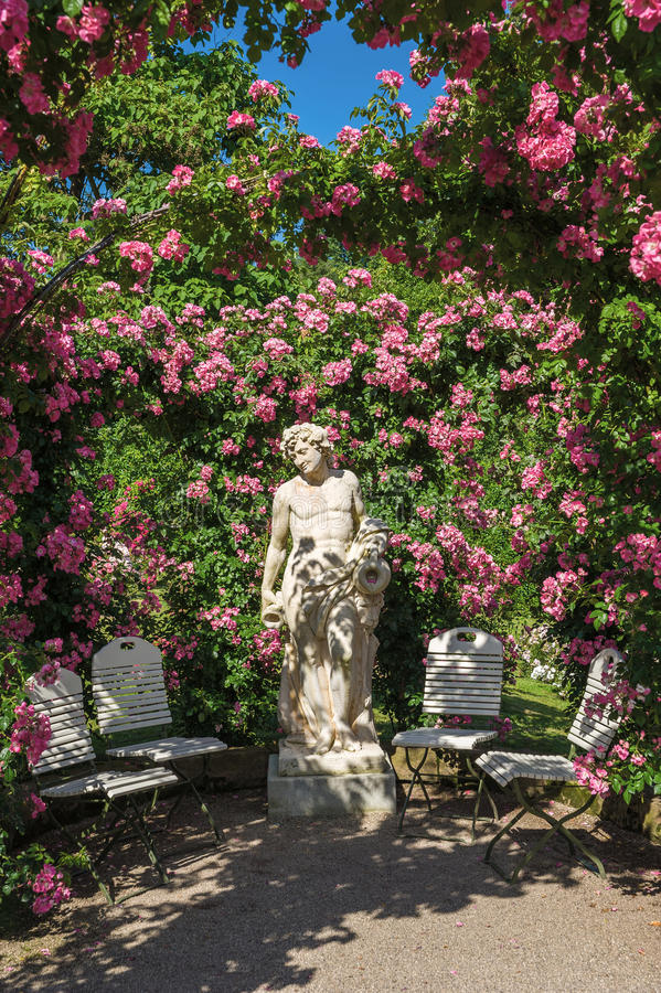 Roses and gods statue in the rose garden Beutig in Baden-Baden. Black Forest, Baden-Wurttemberg, Germany, Europe royalty free stock images