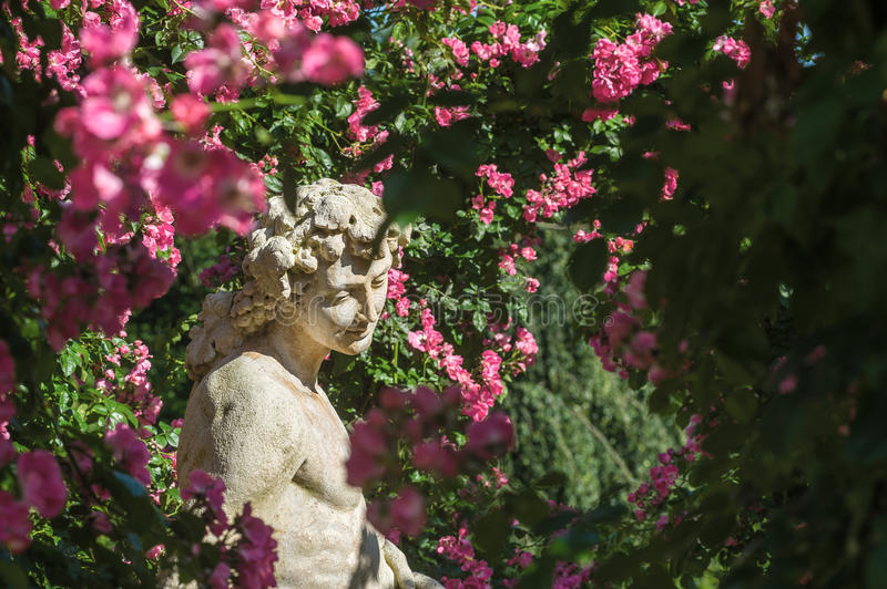 Roses and gods statue in the rose garden Beutig in Baden-Baden. Black Forest, Baden-Wurttemberg, Germany, Europe royalty free stock photography