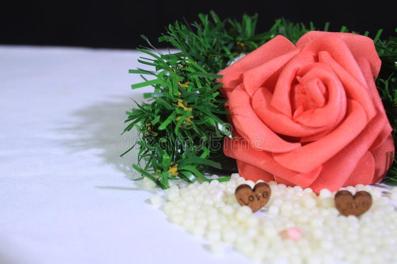 Roses And Grass Photoshoot On Sand. Valentine`s Day Stock Photo - Image of image, edit: 137006132