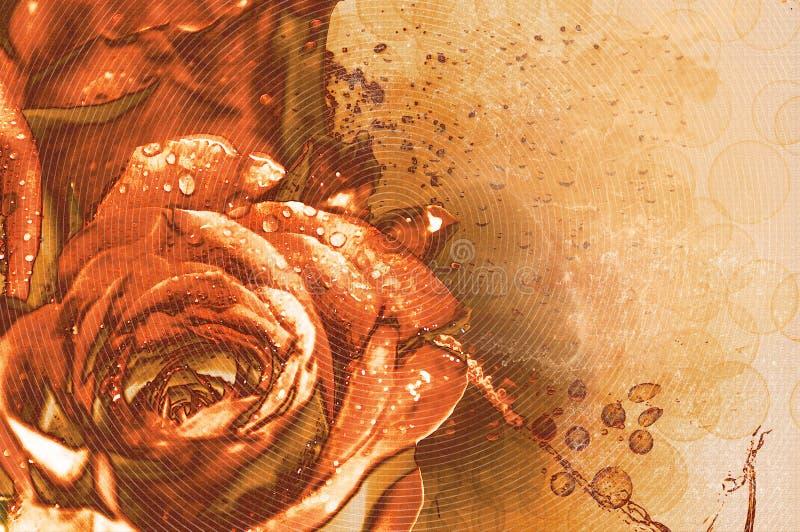 Roses - Grunge Background stock photo