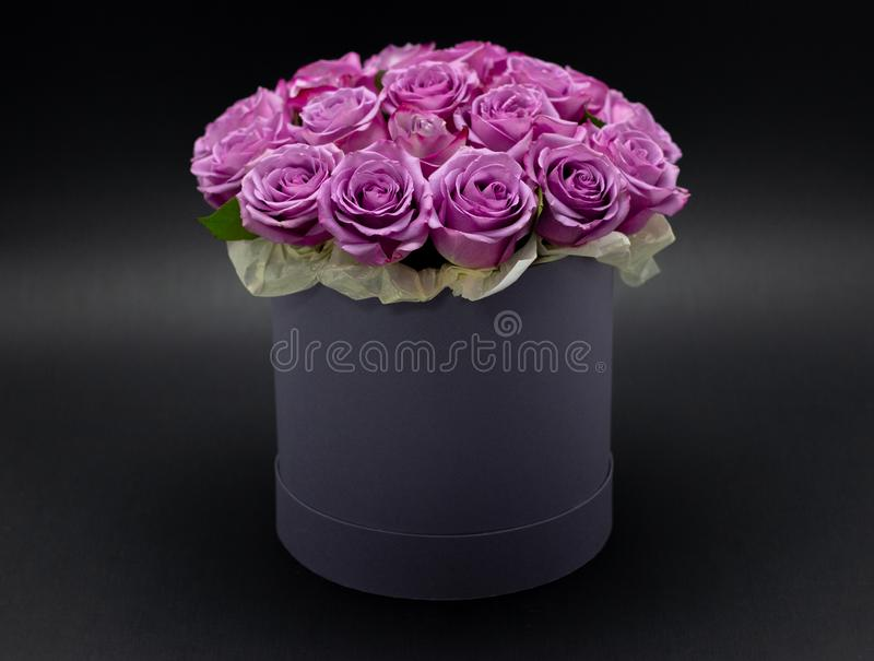 Roses in a hat box on a dark background isolated. Roses in a hat box on a dark background stock photography