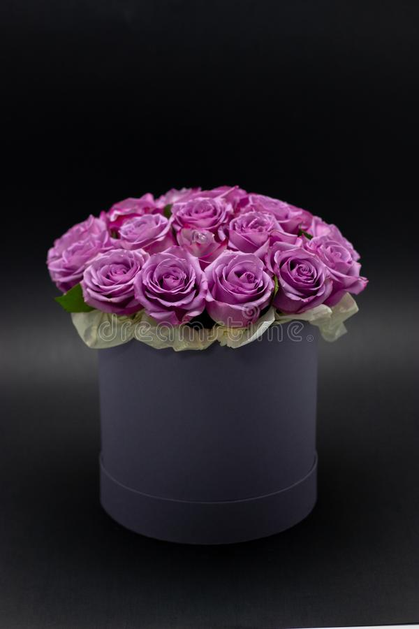 Roses in a hat box on a dark background isolated. Roses in a hat box on a dark background royalty free stock image
