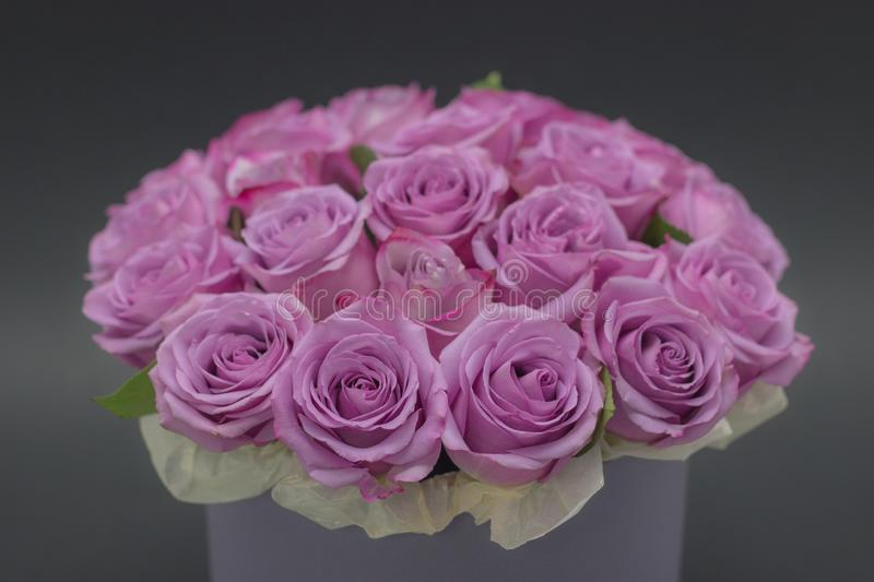 Roses in a hat box on a dark background isolated. Roses in a hat box on a dark background royalty free stock photos