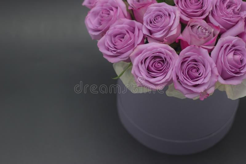 Roses in a hat box on a dark background isolated. Roses in a hat box on a dark background stock photos