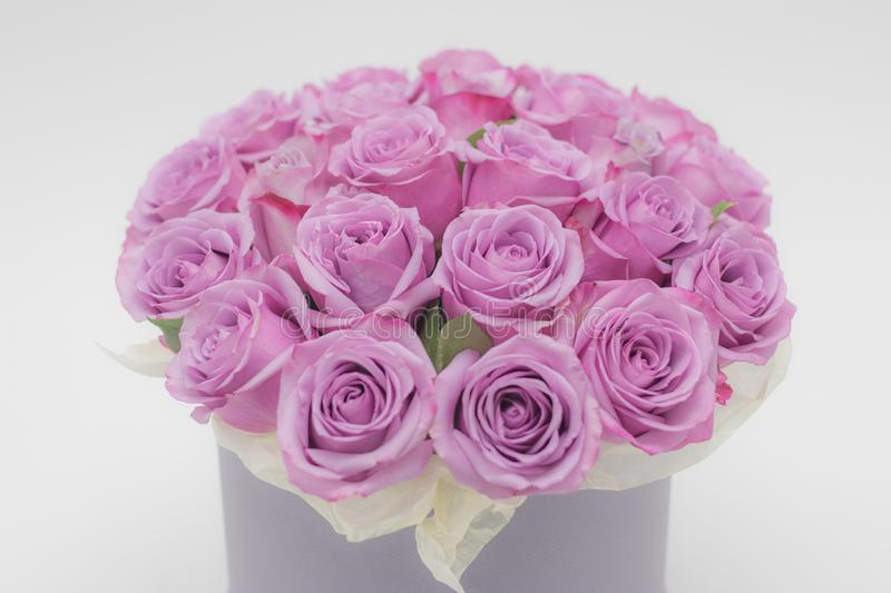 Roses in a hat box on a white background isolated. Roses in a hat box on a white background royalty free stock image