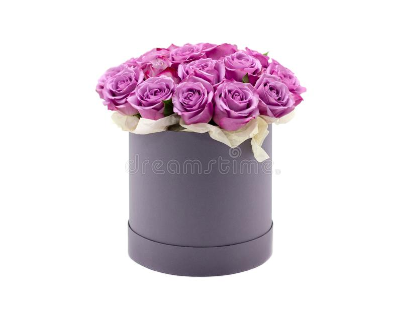 Roses in a hat box on a white background isolated. Roses in a hat box on a white background royalty free stock photography