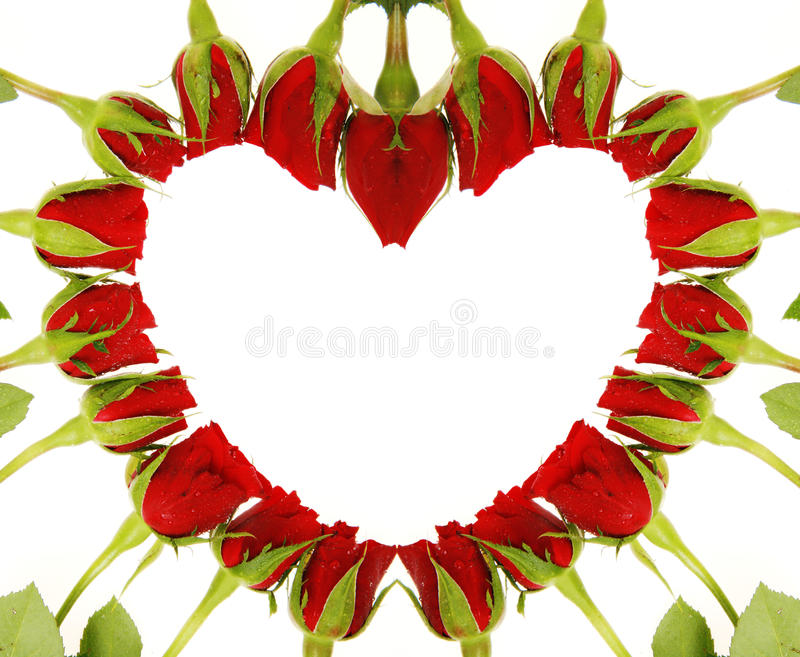 Roses Heart Love Symbol Stock Image Image Of Holiday 43844167