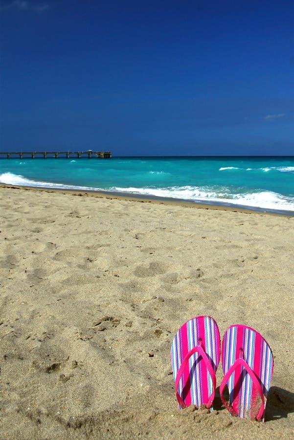 Roses indien Flip Flops sur la plage photos libres de droits