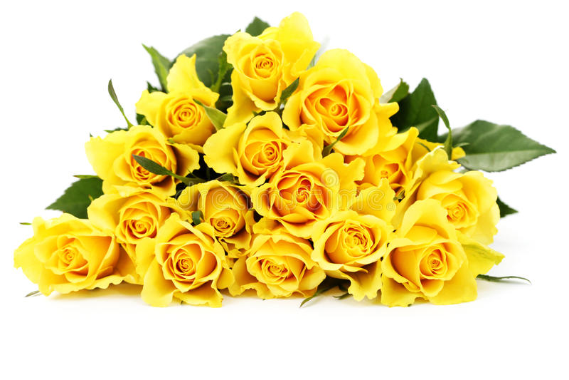 Roses jaunes photo libre de droits