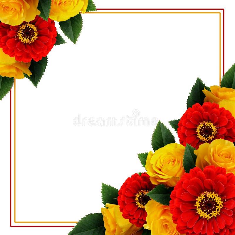 Roses jaunes et disposition de fleurs rouge de zinnia et un cadre image libre de droits