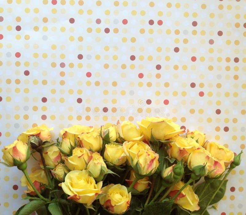 Points et roses de polka dans des couleurs chaudes photographie stock libre de droits