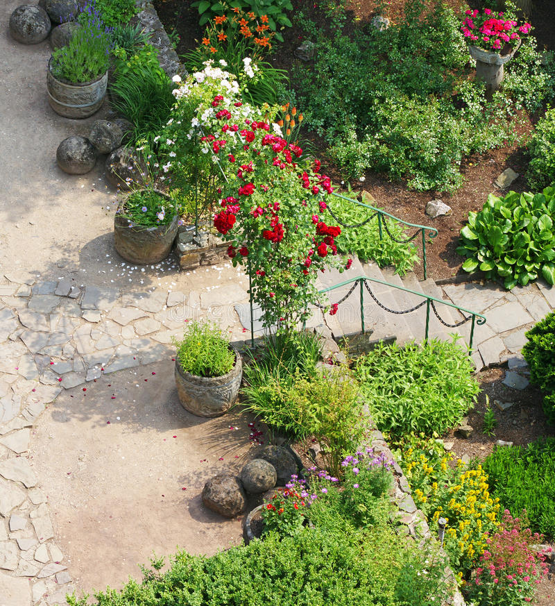 Download Roses in landscaped garden stock image. Image of overhead - 17988339