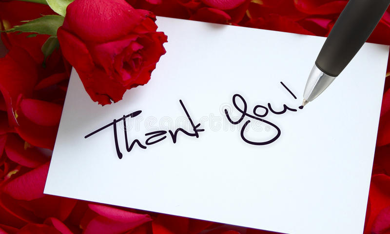 Roses and Letter, callligraphy thank you. Writing thank you in calligraphy on roses and letter stock photos