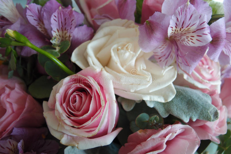 Roses romantiques pour le bouquet de Saint-Valentin photographie stock libre de droits