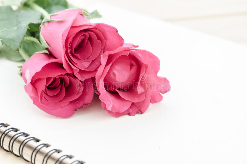 Roses roses avec le journal intime ouvert photo stock