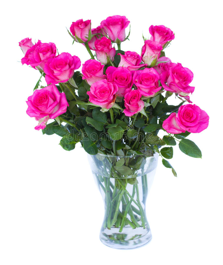 Roses roses dans le vase photo stock
