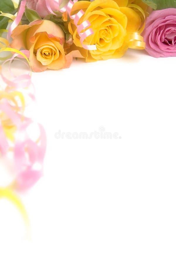 Roses roses et jaunes images stock