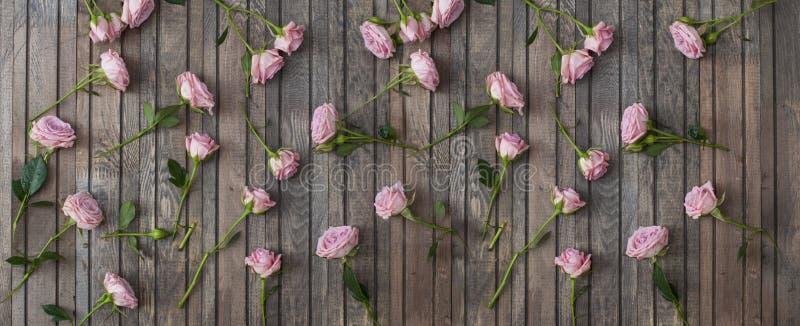 Roses roses sur le fond en bois photo libre de droits