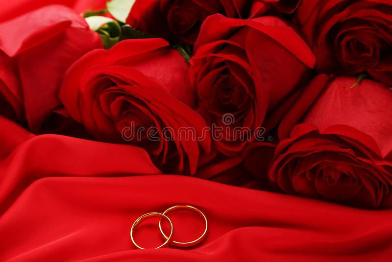 Roses rouges avec les anneaux d'or photo stock