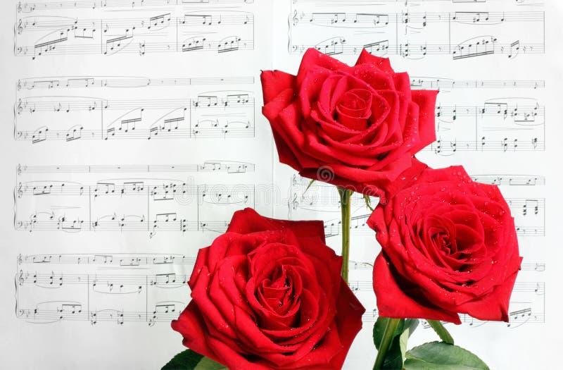 Roses rouges et musique de feuille image libre de droits