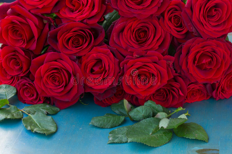 Roses rouges fraîches sur la table bleue photo libre de droits
