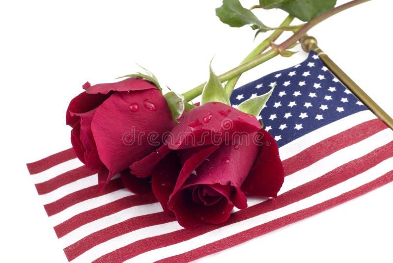 Roses rouges sur l'indicateur américain photographie stock
