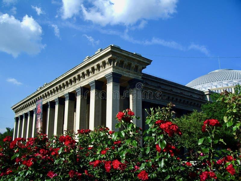 Roses rouges sur le fond du bâtiment de théâtre image stock