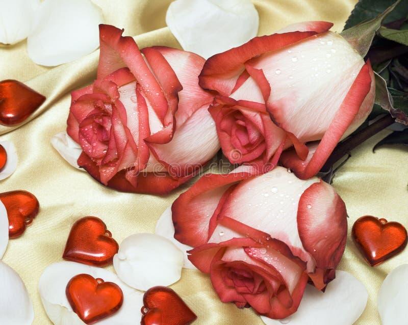 Roses rouges sur le satin avec des coeurs image stock