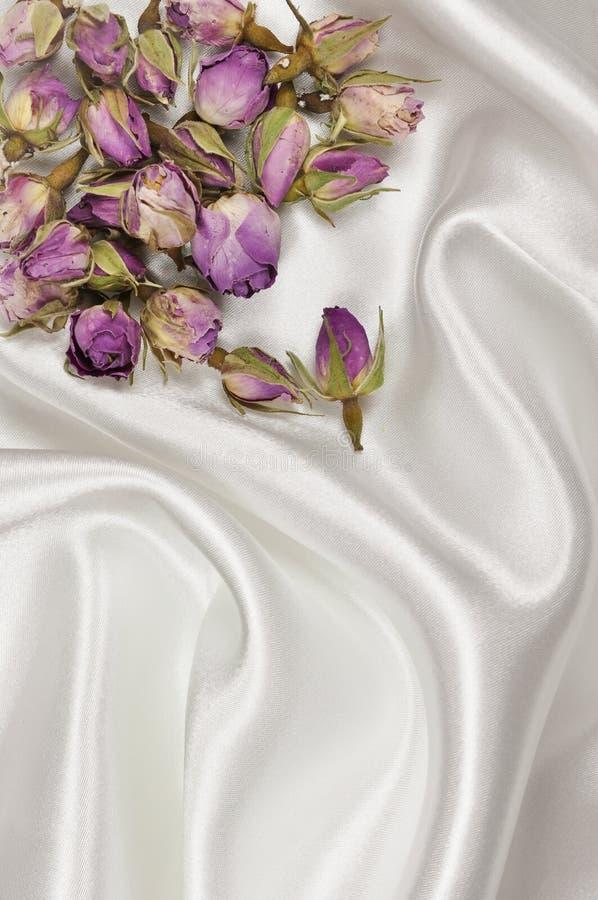 Roses sèches sur un fond blanc de satin ou de soie photographie stock libre de droits