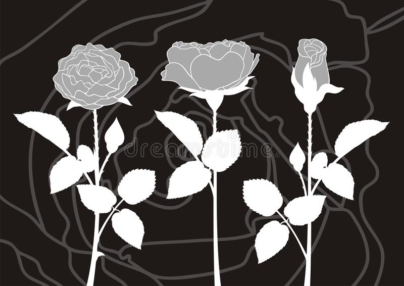 Download Roses silhouettes stock vector. Image of background, silhouette - 20323965