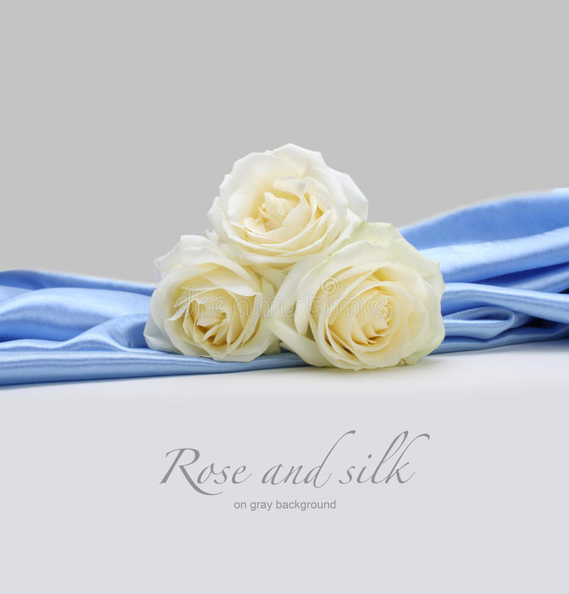 Roses On Silk Background Stock Image