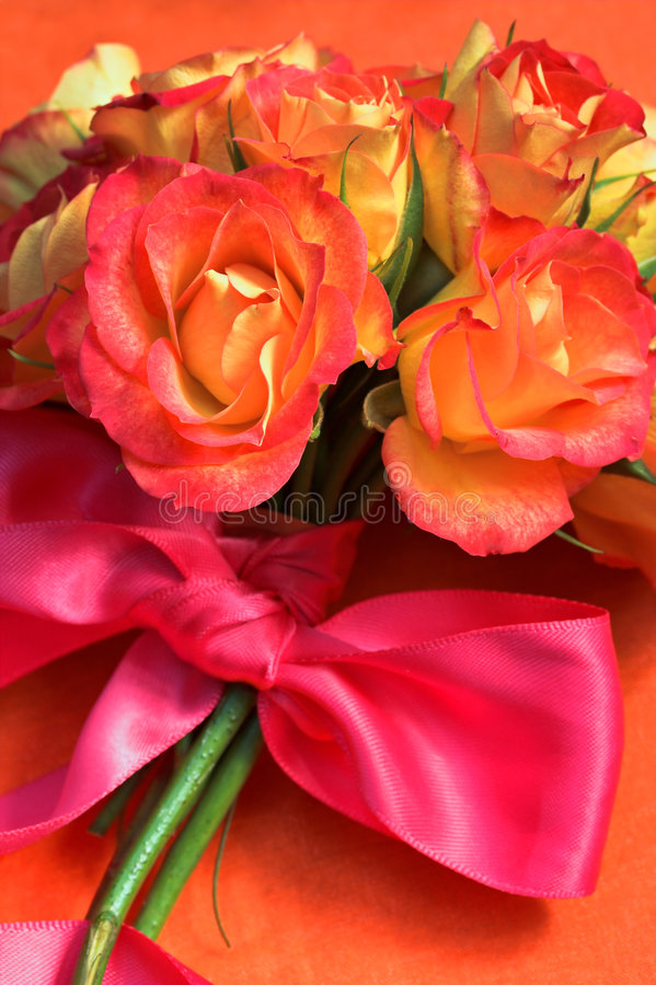 Roses with Silk pink ribbon royalty free stock images