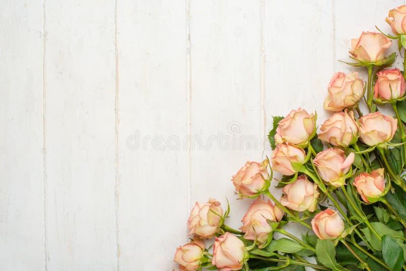 Roses roses sur un fond en bois blanc, fond de fête, anniversaire, mariage, Saint-Valentin photo libre de droits
