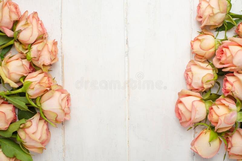 Roses roses sur un fond en bois blanc, fond de fête, anniversaire, mariage, Saint-Valentin photo stock