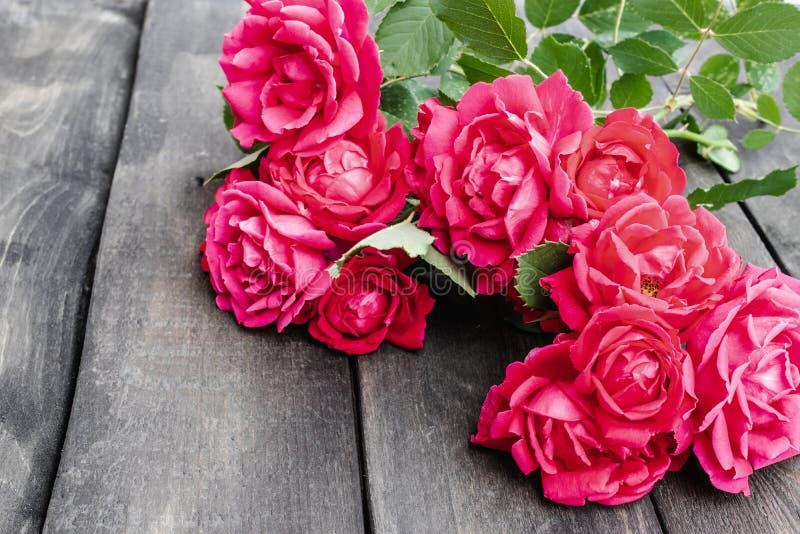 Roses sur un vieux conseil en bois Fleurissez la trame image stock