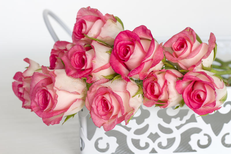 Roses. On the table pink stock image