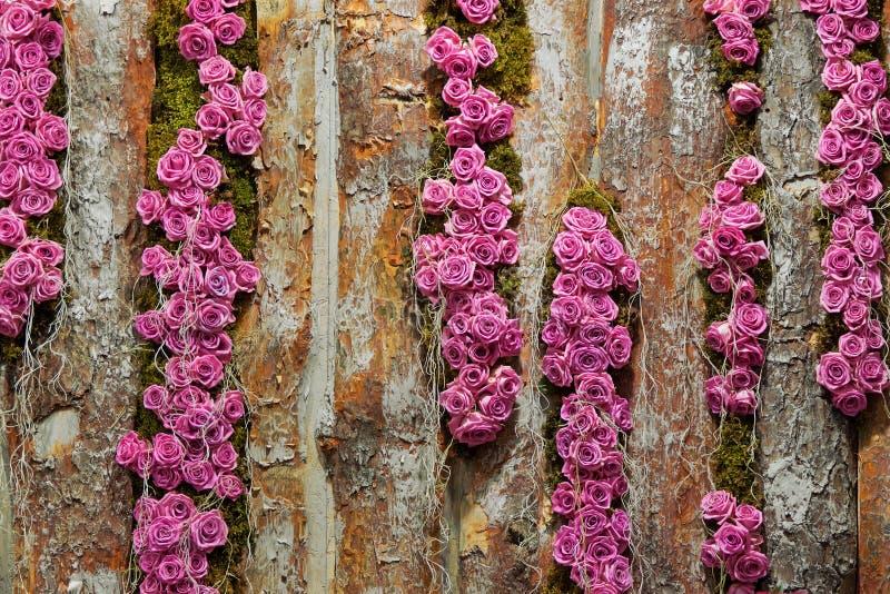 Roses On Timber Stock Photos