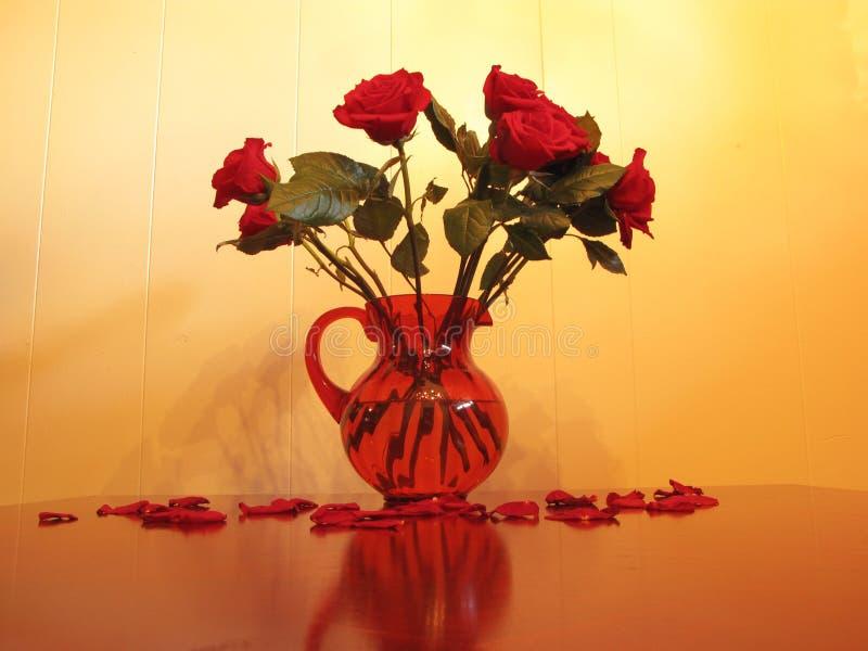 Roses in vase royalty free stock photo