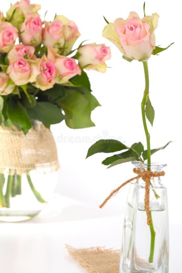 Roses, vieux rose image libre de droits