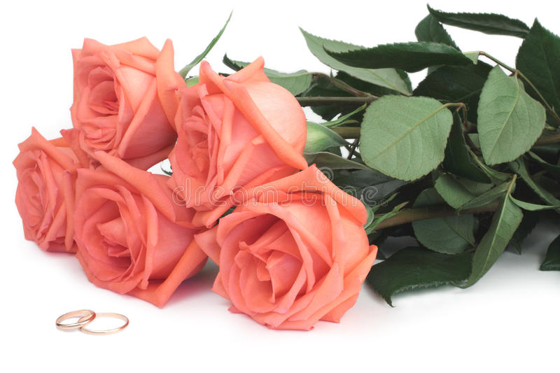 Download Roses and wedding rings stock photo. Image of objects - 13375576
