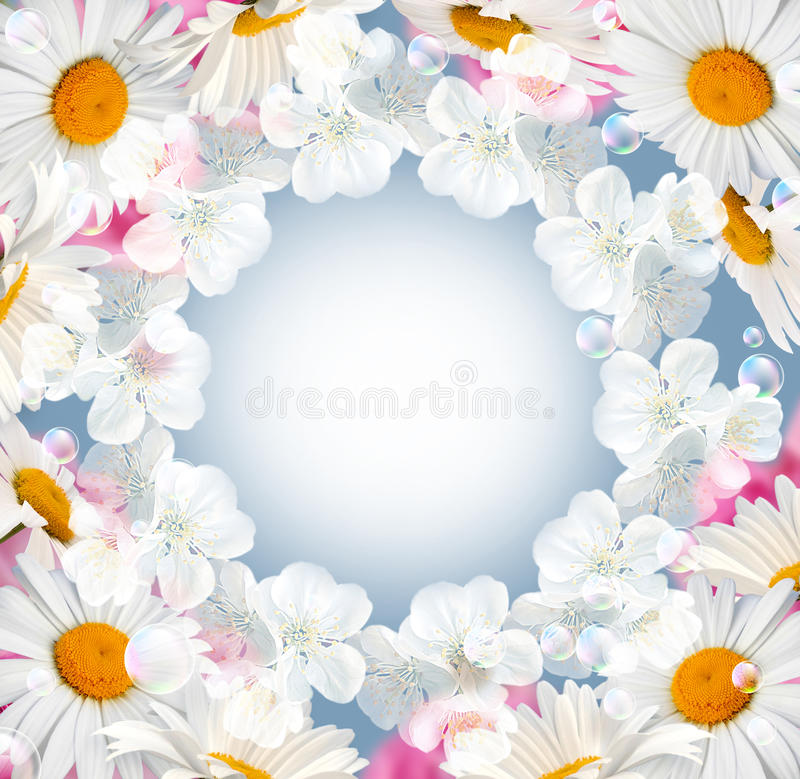 Roses and white flowers vector illustration