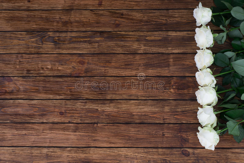 Roses on a wooden background stock photos