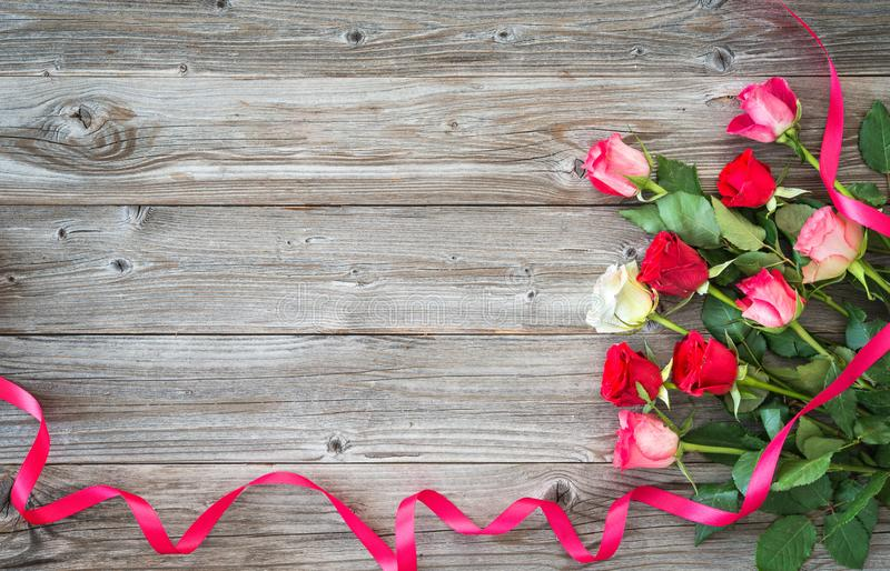 Roses on wooden board royalty free stock image